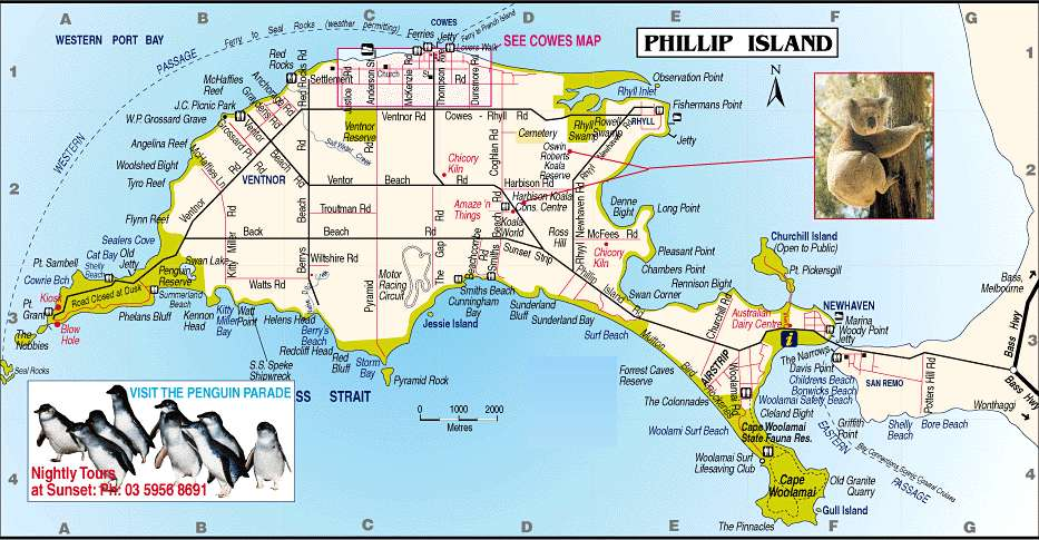 Map Of Phillip Island Melbourne